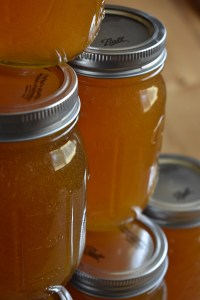 Stacks of Honey