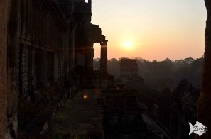 It's 5:40 am and this is the sunrise from Angkor Wat. Worth every damn waking up effort!