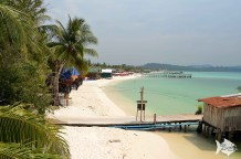 "You can't find this in Thailand anymore,"" said Paddy Robinson, an expatriate Brit and the manager of Monkey Island, who has been on the island for more than five years."