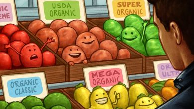 Photo of Organic, Natural and Healthy Foods: Complete Myths, Marketing or Lies?