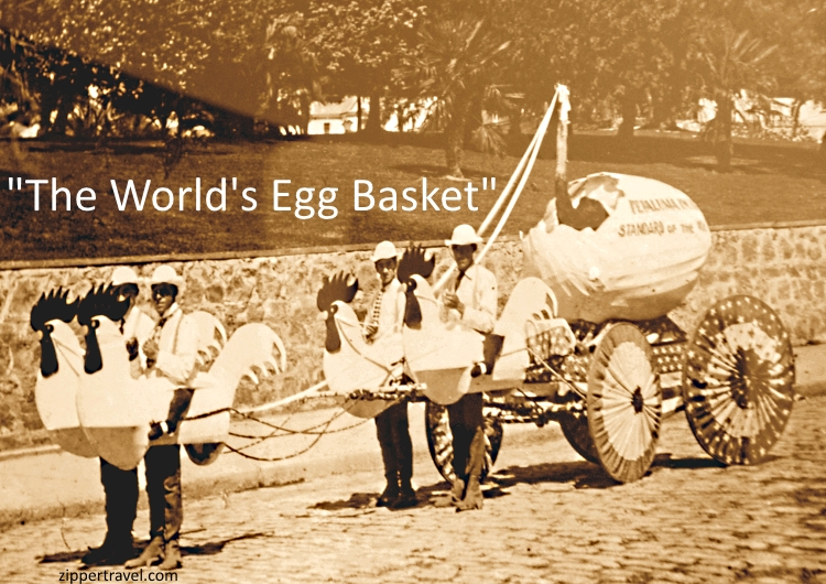 Vintage photo of men in rooster bodies at the Petaluma California Egg and Butter Parade