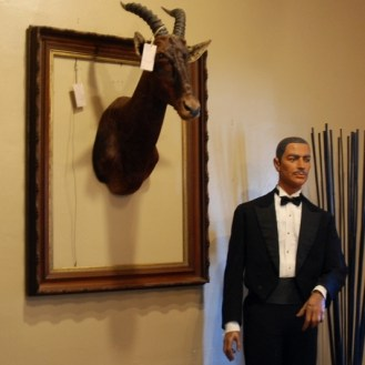 Antelope taximdermy and mannequin in a tuxedo at Sienna Antiques in Petaluma California
