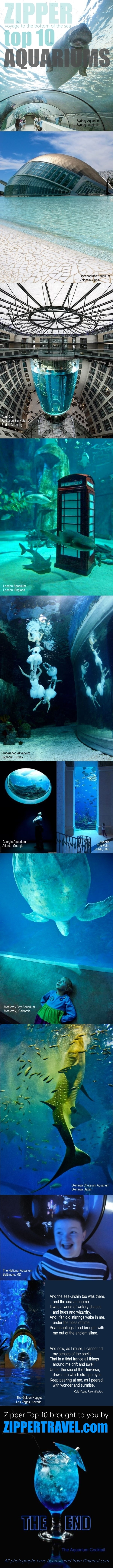 Photos of Zippertrave's Top 10 Aquariums images shared from Pinterest.com
