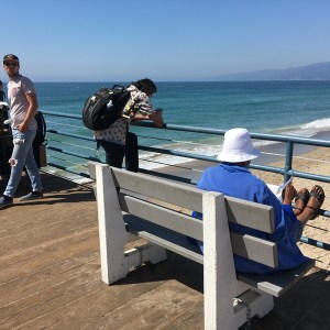 People relaxing Santa Monica Pier California
