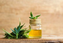 The CBD Industry Continues to Grow