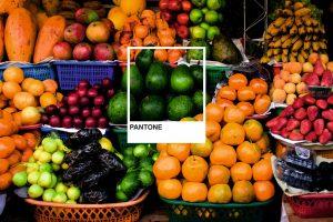Rainbow Pantone Polaroid with Fruit