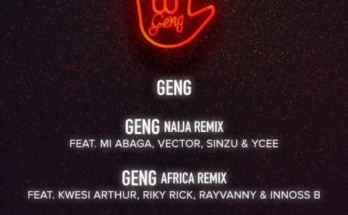 Mayorkun Geng Remix