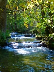 řeka, plout s proudem