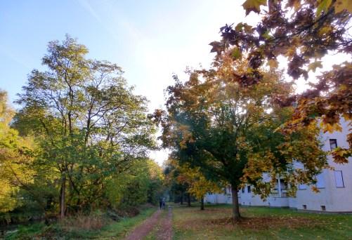 Ach hier ist der Herbst angekommen.