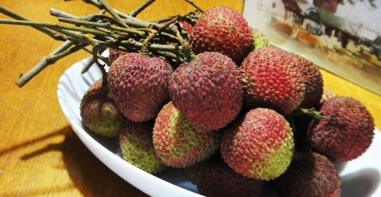 就算噴鼻血也要吃 真鮮美食通大樹鄉貴妃村玉荷苞