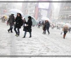 東京,雪,冬,画像