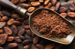 Proteinowe ptasie mleczko kakaowe