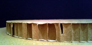 Plaster miodu - 3