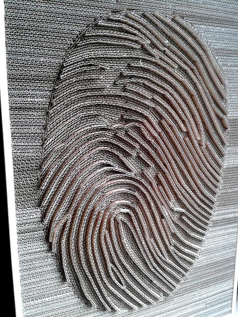 linie-papilarne-z-kartonu-4