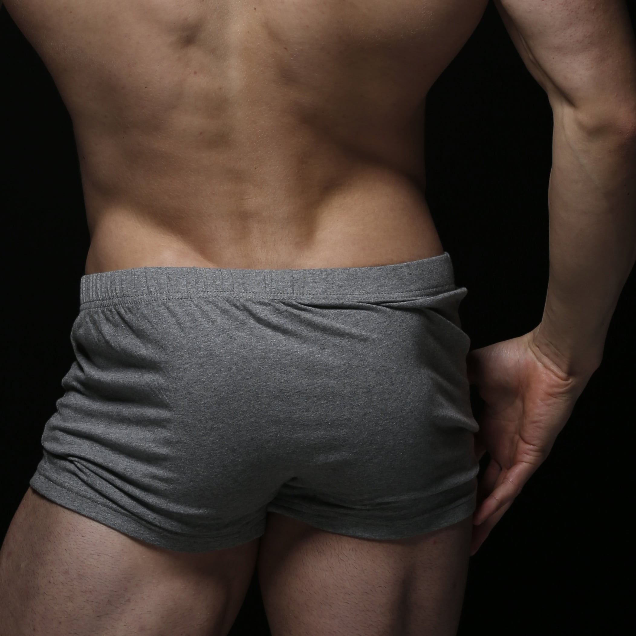 zlc-grey-boxer-back-closeup