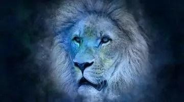 Tedenski horoskop Lev