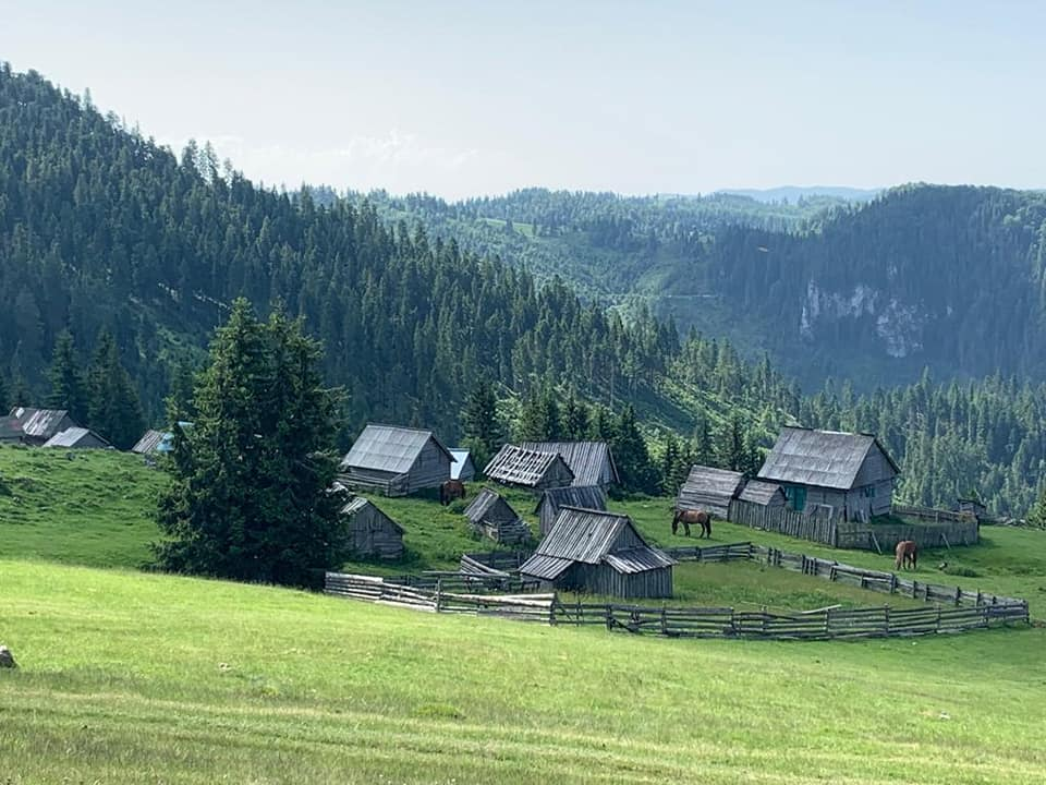 טיול מאורגן לרומניה