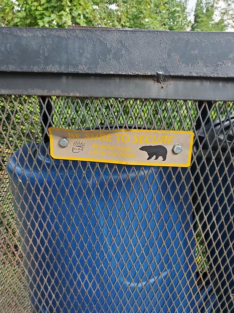 דובים בגטלינבורג