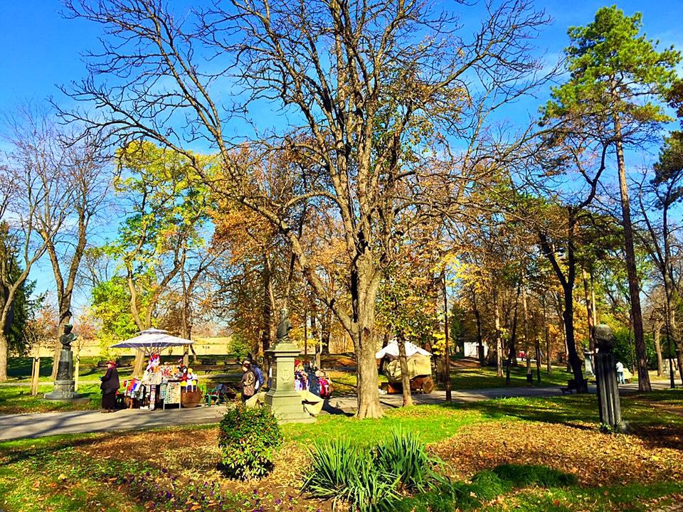 הפארק באזור המצודה
