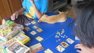 Ditemani kucingnya Kaysan, agar makin semangat :D