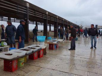Bari-Fish-Market-17
