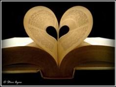 Day_1_Photo_1_Bible-300x226