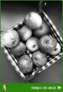 Słodkie jabłuszka