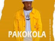 """DOWNLOAD: Dizmo - """"Pakokola"""" Mp3"""