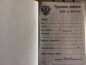 Действительна ли трудовая книжка беларуси в россии