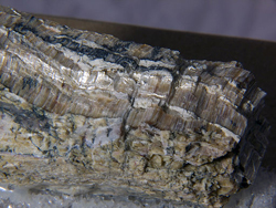 Asbestos - there is no safe level - image from Wikimedia Commons