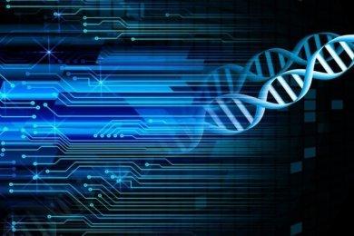DNA Testing