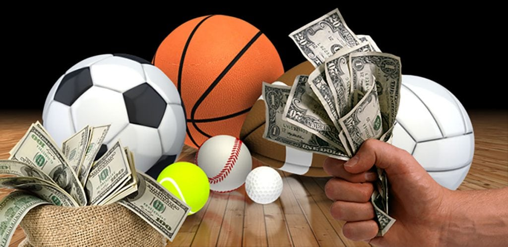 Sports Betting: Different Niches You Can Look Into - ZOBUZ