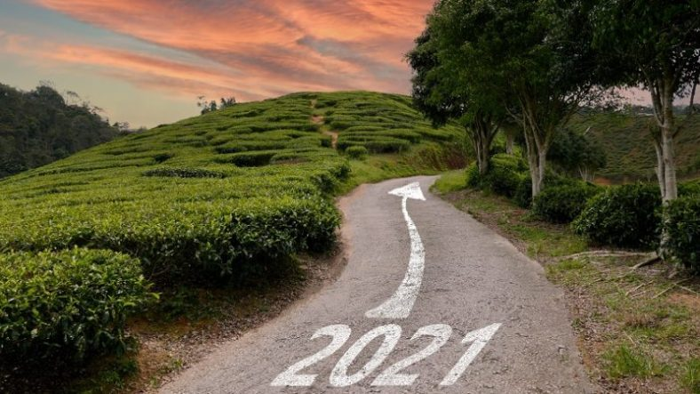 Why Shouldn't Probate Insurance Be Neglected in 2021
