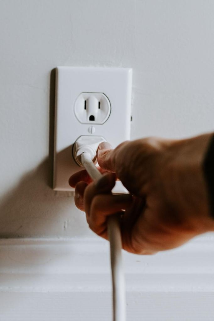 10 Ways to Prevent Electric Hazards with Pets 1