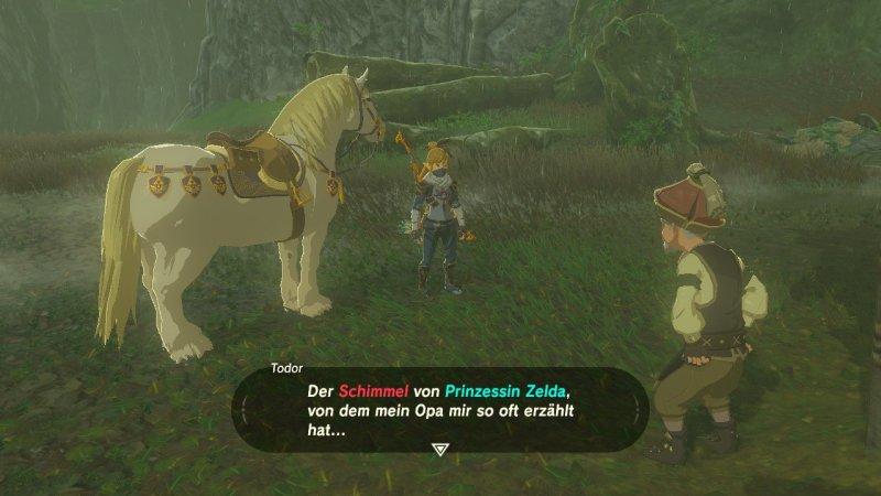 Breath of the Wild: Zeldas Schimmel