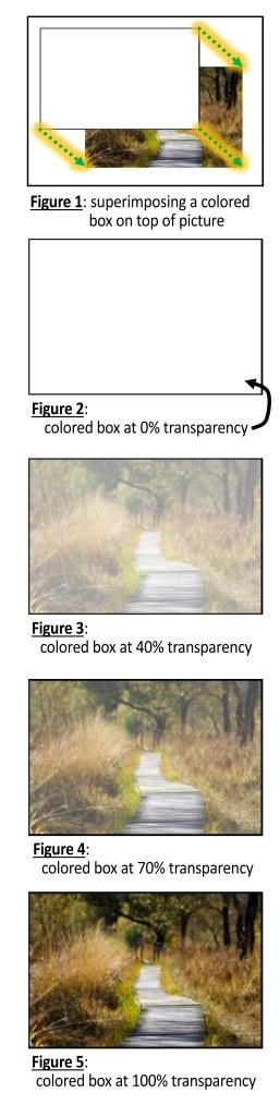 transparancey (untabled)