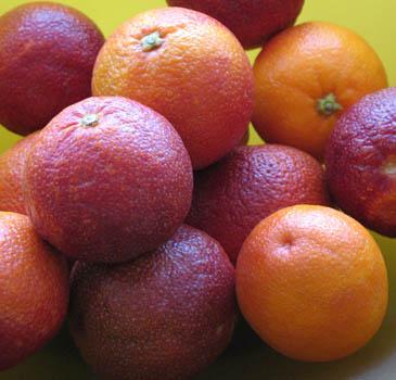 Blood Oranges   ZoëBakes   Photo by Zoë François