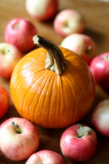 Apples and a Pumpkin   ZoëBakes   Photo by Zoë François