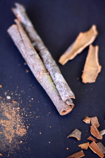 Vietnamese Cinnamon Bark | ZoëBakes | Photo by Zoë François