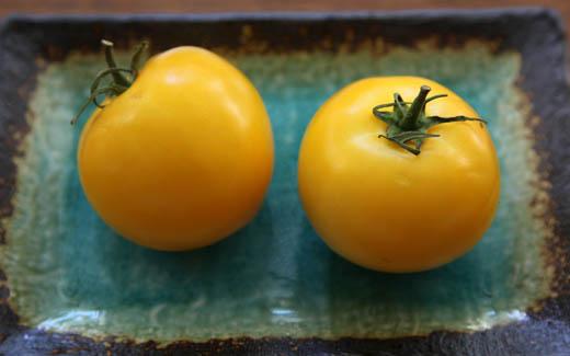 Yellow tomatoes   ZoëBakes   Photo by Zoë François