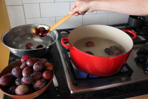 Blanching plums for peeling | ZoëBakes | Photo by Zoë François