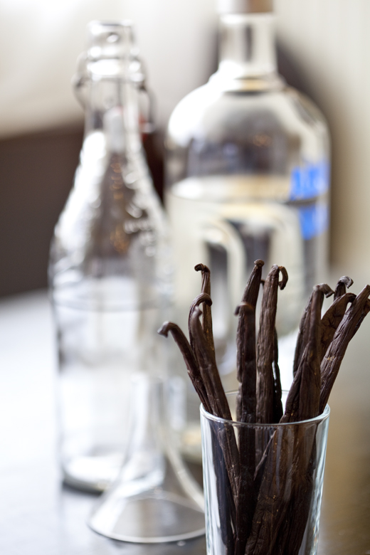 How to make vanilla extract with a vanilla bean - photo by Zoë François