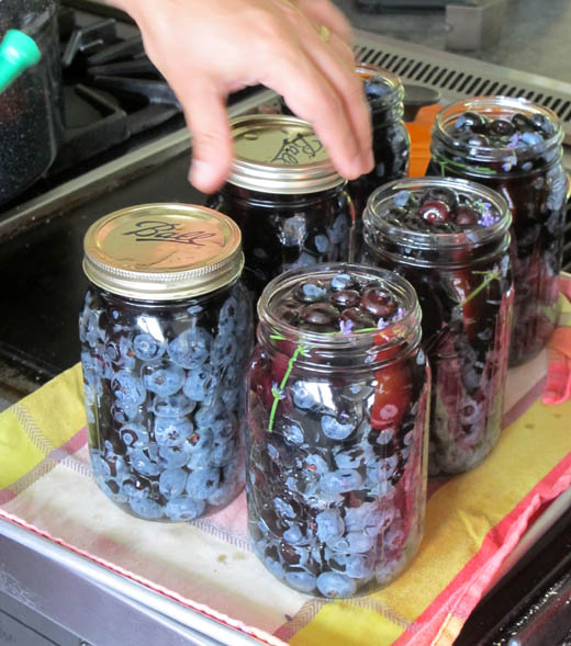 canning blueberries with Suvir Saran at Masala Farm | photo by Zoë François