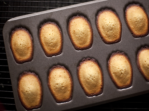 Baked honey madeleines | ZoëBakes | Photo by Zoë François