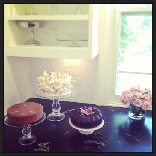 photo shoot cakes zb