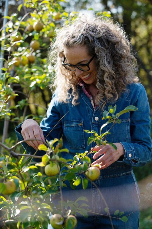 Host Zoe Francois picks apples at Sweetland Orchard, as seen on Zoe Bakes.