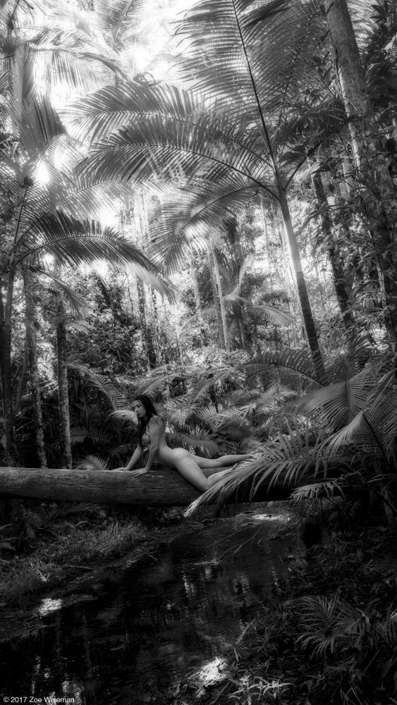 © 2017 Zoe Wiseman - model: Cheyann