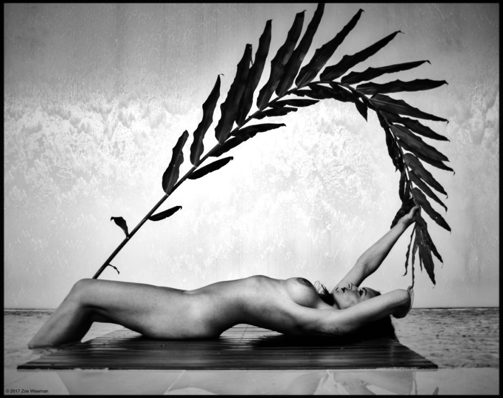 © 2017 Zoe Wiseman - model: Tara Tree