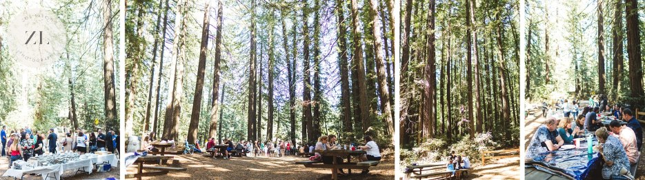 wide angle view of trees at wedding