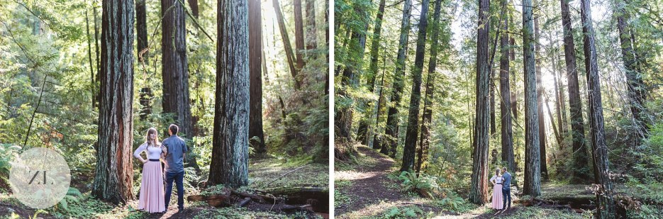epic engagement photography in redwood forest of san mateo county